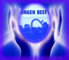 Groningen beeft