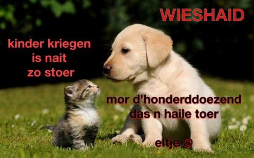 Wieshaid