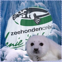 Zeehondencrèche