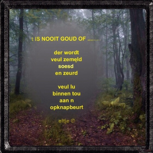 t Is nooit goud