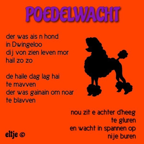 Poedelwacht