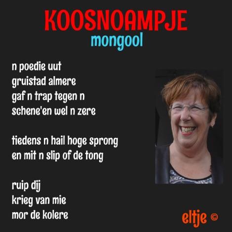 Mongool
