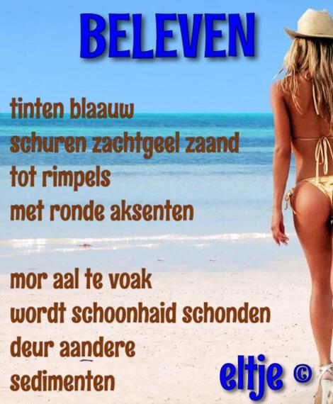 Beleven