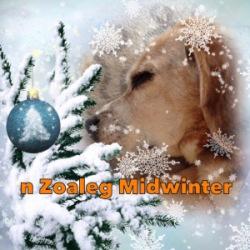 Zoaleg Midwinter