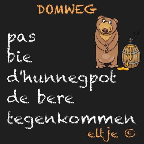 Domweg