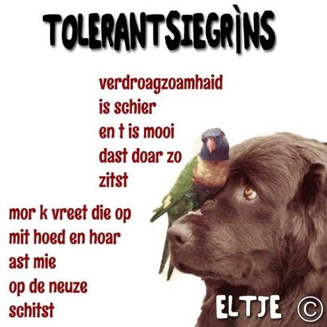 Tolerantsiegrìns