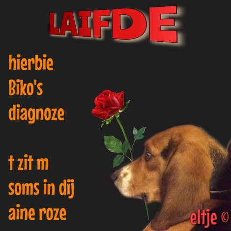 Laifde