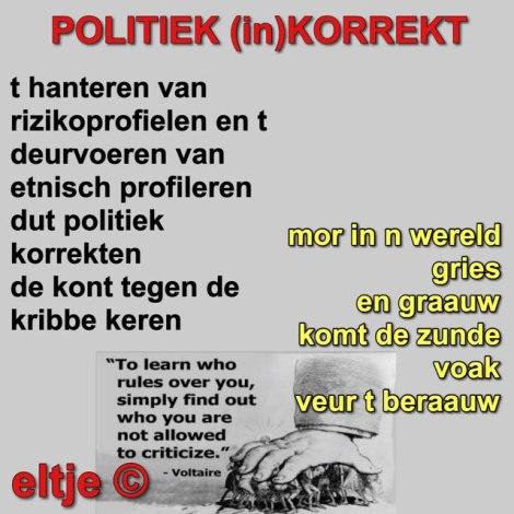 Politiek korrekt