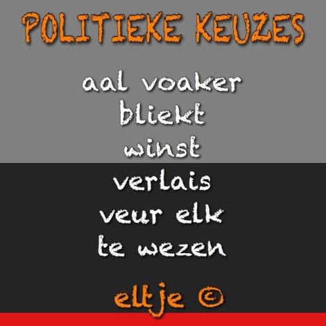 Politieke keuzes