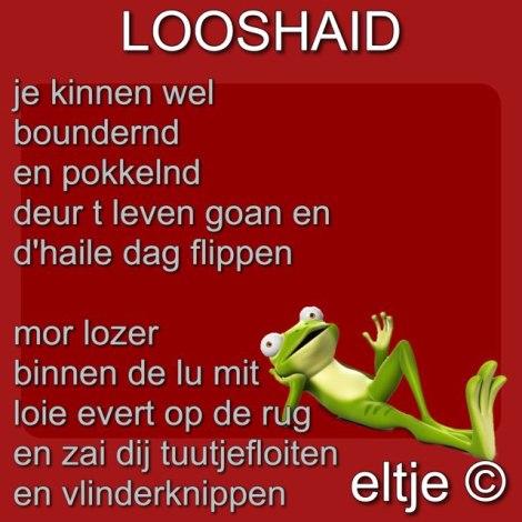 Looshaid