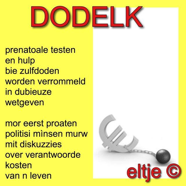Eltje Doddema